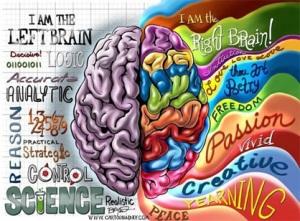 RIght vs Left Brain