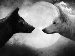 good bad wolf
