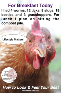 Chicken Meals Meme