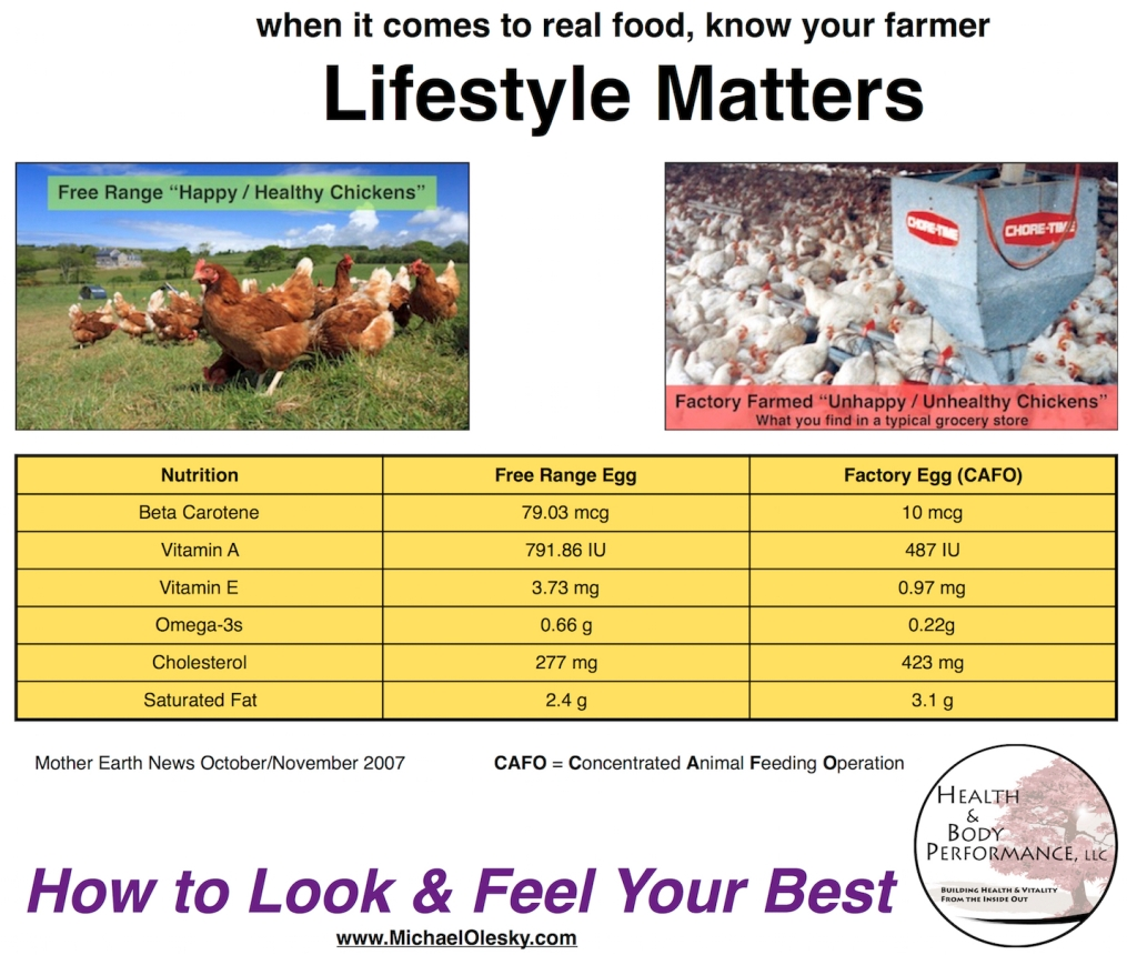 Lifestyle Matters - Chicken Eggs Meme sm